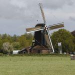 molen-en-gemalendag-2013-den-olden-florus-50-1500px