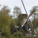 molen-en-gemalendag-2013-den-olden-florus-51-1500px